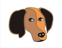 Abstract dog. Face divided into two colored parts Stock Photography
