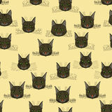 Abstract  doodle cat face seamless pattern Royalty Free Stock Image