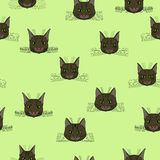 Abstract  doodle cat face seamless pattern Royalty Free Stock Photos