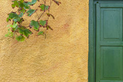Colorful wooden door  Royalty Free Stock Image