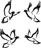 Abstract Dove Set Royalty Free Stock Photography