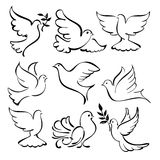Abstract  dove sketch set vector  illustration. Flying dove  sketch collection  cartoon vector  illustration Stock Photos