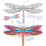 Abstract dragonfly Stock Photo