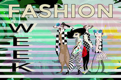 Abstract draw fun stylish  Meerkat in suits, hat, text Fashion Week Stock Photography