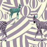 Abstract draw  herd  zebras pink  green black on the background of purple Royalty Free Stock Photo