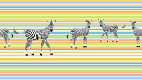 Abstract draw  herd  zebras in the savannah colorful Stock Images