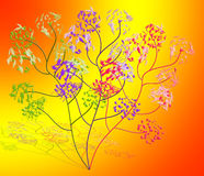 Abstract  drawing -  flowers Stock Images
