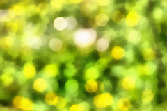 Abstract Drawing, Realism. Abstract picture in green tones Royalty Free Stock Photos
