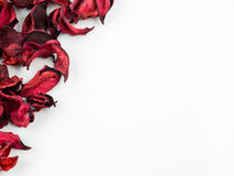 Abstract with dried red petals on white background. Abstract texture with dried petals Stock Photo