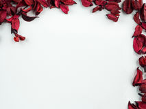 Abstract with dried red petals on white background. Abstract texture with heart of dried petals Stock Photography