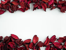 Abstract with dried red petals on white background. Abstract texture with heart of dried petals Stock Images