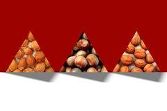 Abstract driehoekenhoogtepunt van van van abrikozenkuilen, hazelnoten en okkernoten texturen Royalty-vrije Stock Afbeeldingen