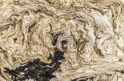 Abstract driftwood pattern Royalty Free Stock Image