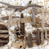 Abstract Driftwood and Seashell Background Stock Images