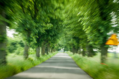 Abstract driving on forest road Stock Photo