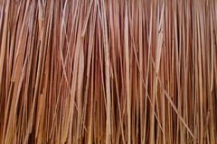 Abstract dry grass background Royalty Free Stock Images