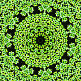 Abstract duckweed pattern background. Royalty Free Stock Image