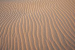 Abstract Dune Pattern Royalty Free Stock Images