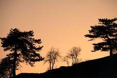 Abstract dusk landscape Royalty Free Stock Image