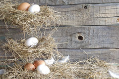 Abstract easter organic eggs on vintage boards in chicken coop Stock Photo