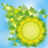 Abstract eco background with green leaves Royalty Free Stock Images