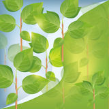 Abstract eco background with plant Royalty Free Stock Images