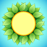Abstract eco background with stylish sunflower Stock Images