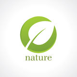 Abstract eco green shape, nature concept Stock Photo