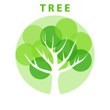 Abstract eco tree Royalty Free Stock Image