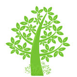 Abstract Eco Tree Silhouette with Leaf and Vines Stock Photos