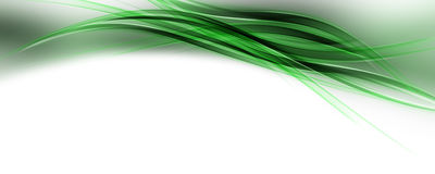 Abstract eco wave panorama design Royalty Free Stock Image
