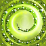 Abstract ecology green background Royalty Free Stock Photography