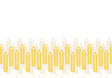 Abstract eenvoudig patroon van tarweoren, vectorornament Royalty-vrije Stock Afbeeldingen