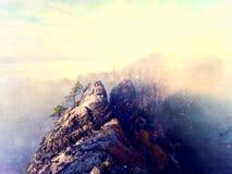 Abstract effect De herfstzonsopgang in berg binnen inversie Pieken van heuvelsstrook uit van mist Royalty-vrije Stock Fotografie