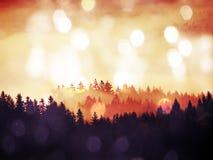 Abstract effect Dromerig die landschap in dikke mist wordt verloren Fantastische ochtend die door zacht zonlicht gloeien, Royalty-vrije Stock Fotografie