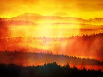 Abstract effect Dromerig die landschap in dikke mist wordt verloren Fantastische ochtend die door zacht zonlicht gloeien, Royalty-vrije Stock Afbeelding