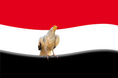 Abstract egyptian flag Stock Photography