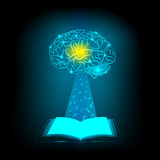 Abstract electric circuit open book. Brain concept Stock Image
