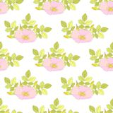Abstract Elegance Seamless pattern with floral background. Vector illustration Stock Photography