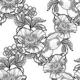 Abstract elegance seamless pattern with floral elements Royalty Free Stock Photography