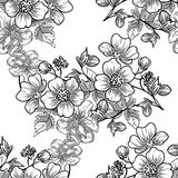 Abstract elegance seamless pattern with floral elements. Vintage flowers. Abstract elegance seamless pattern with floral elements. Flower background Royalty Free Stock Photos