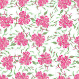 Abstract elegance seamless pattern with floral pink background. Royalty Free Stock Photo