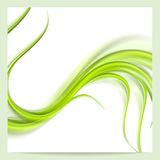 Abstract elegant green wavy pattern background Royalty Free Stock Photos