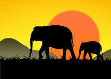 Abstract of Elephant family. Elephant family silhouettes in Asian forest Stock Photo