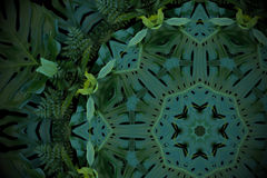 Abstract emerald green background, tropical leaves pattern with stock image