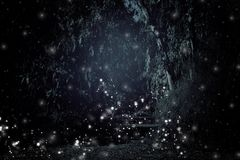 Abstract en magisch beeld van Glimworm die in het concept van het nacht bossprookje vliegen Royalty-vrije Stock Foto