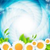 Abstract environmental vector background Stock Photos