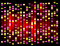 An abstract example of DNA fingerprinting, Royalty Free Stock Photo