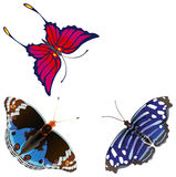 Abstract exotic butterfly. Royalty Free Stock Photography