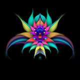 Abstract exotic flower on black background. stock illustration